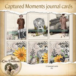 Captured moments journal cards
